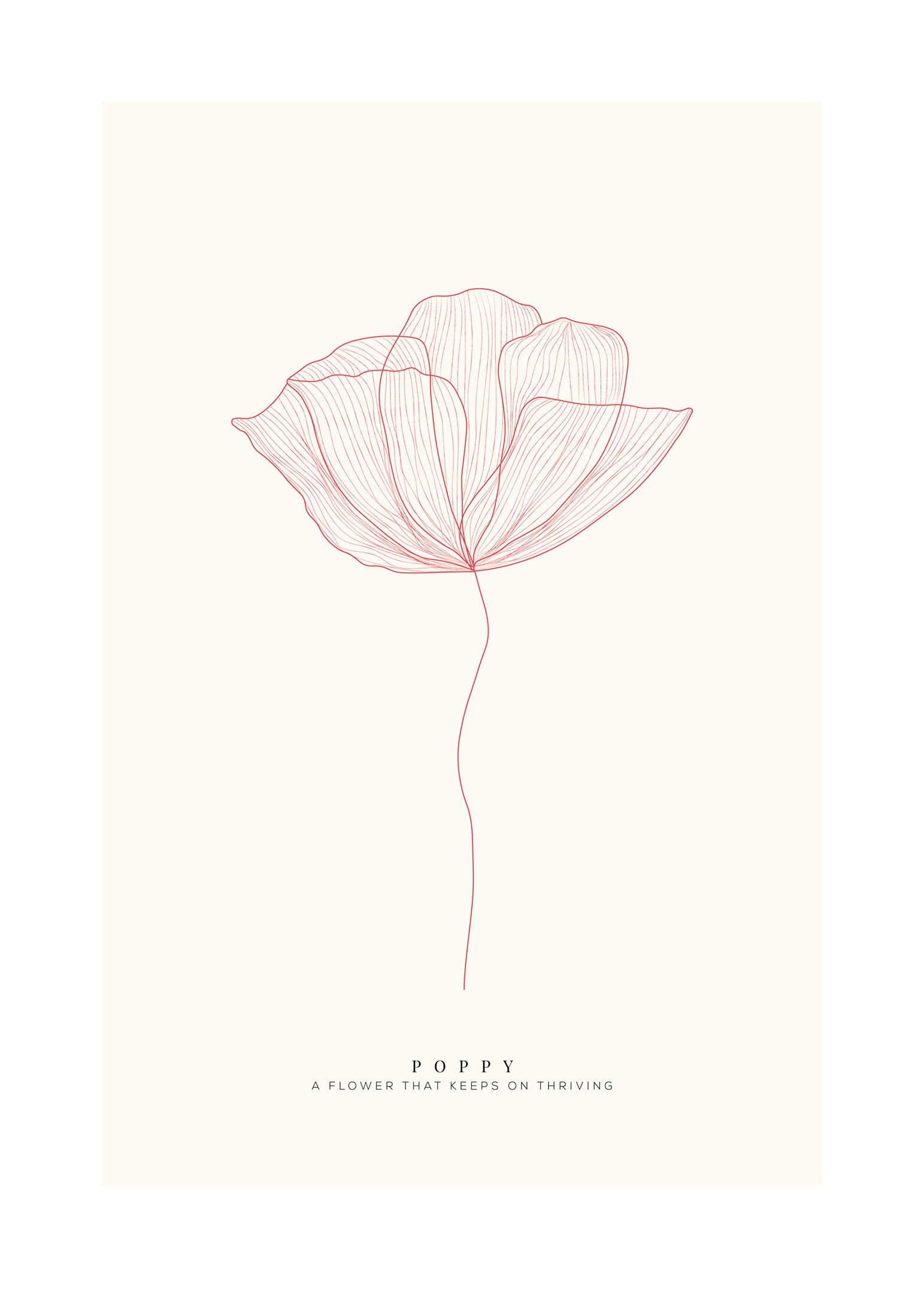 Poppy röd poster