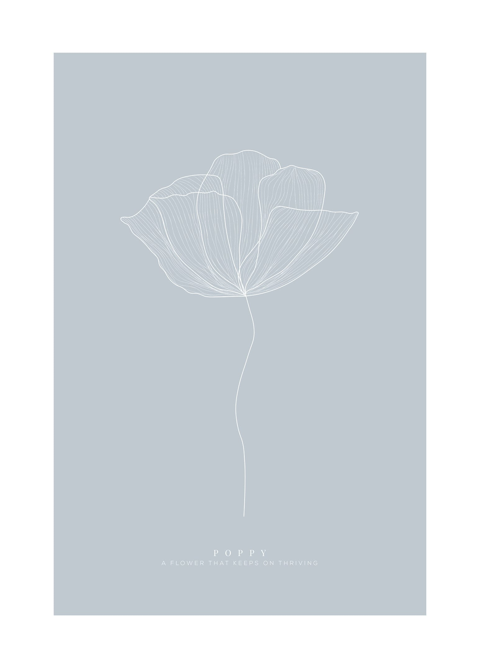 Poppy ljusblå poster