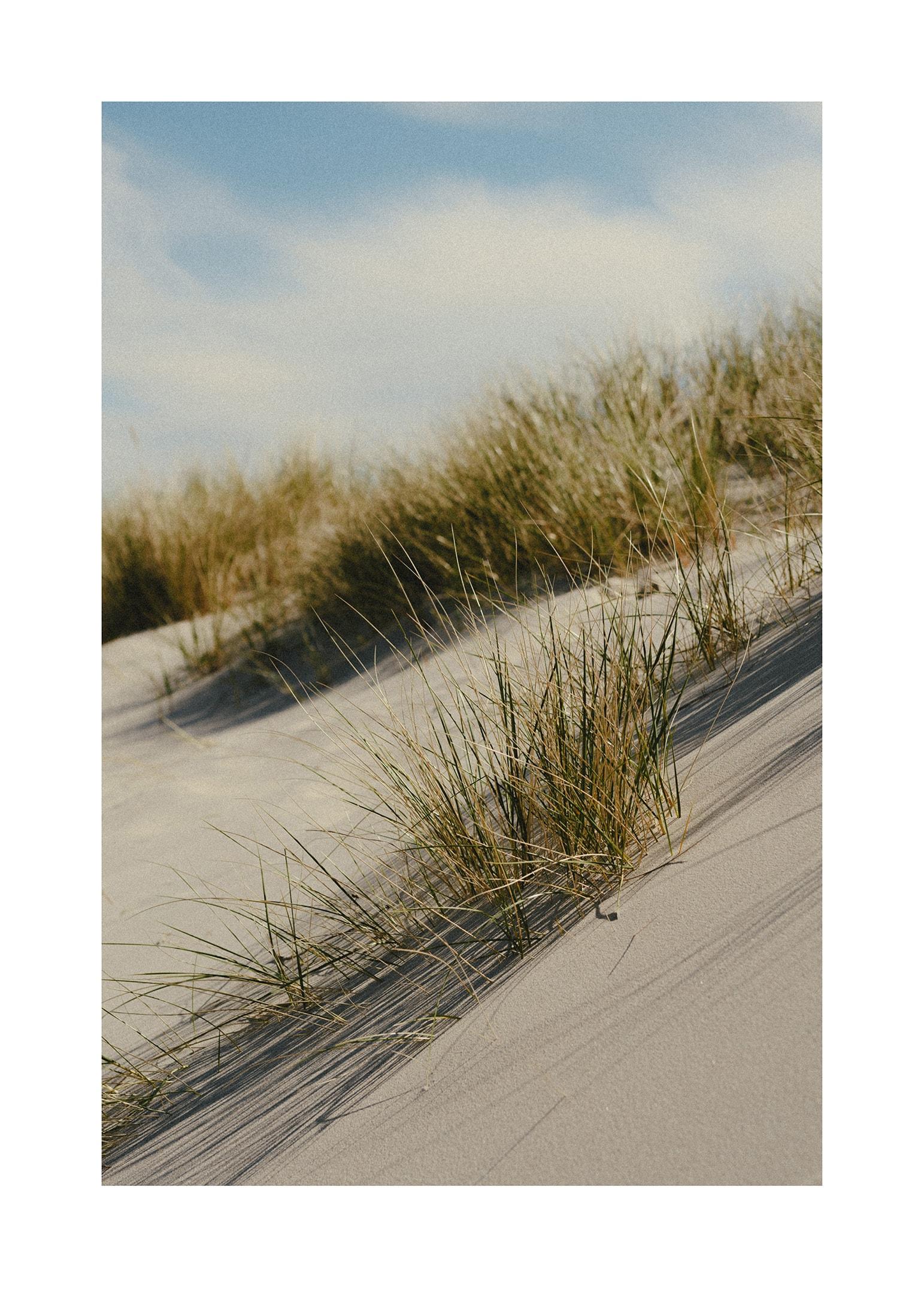Österlens strandlinje poster