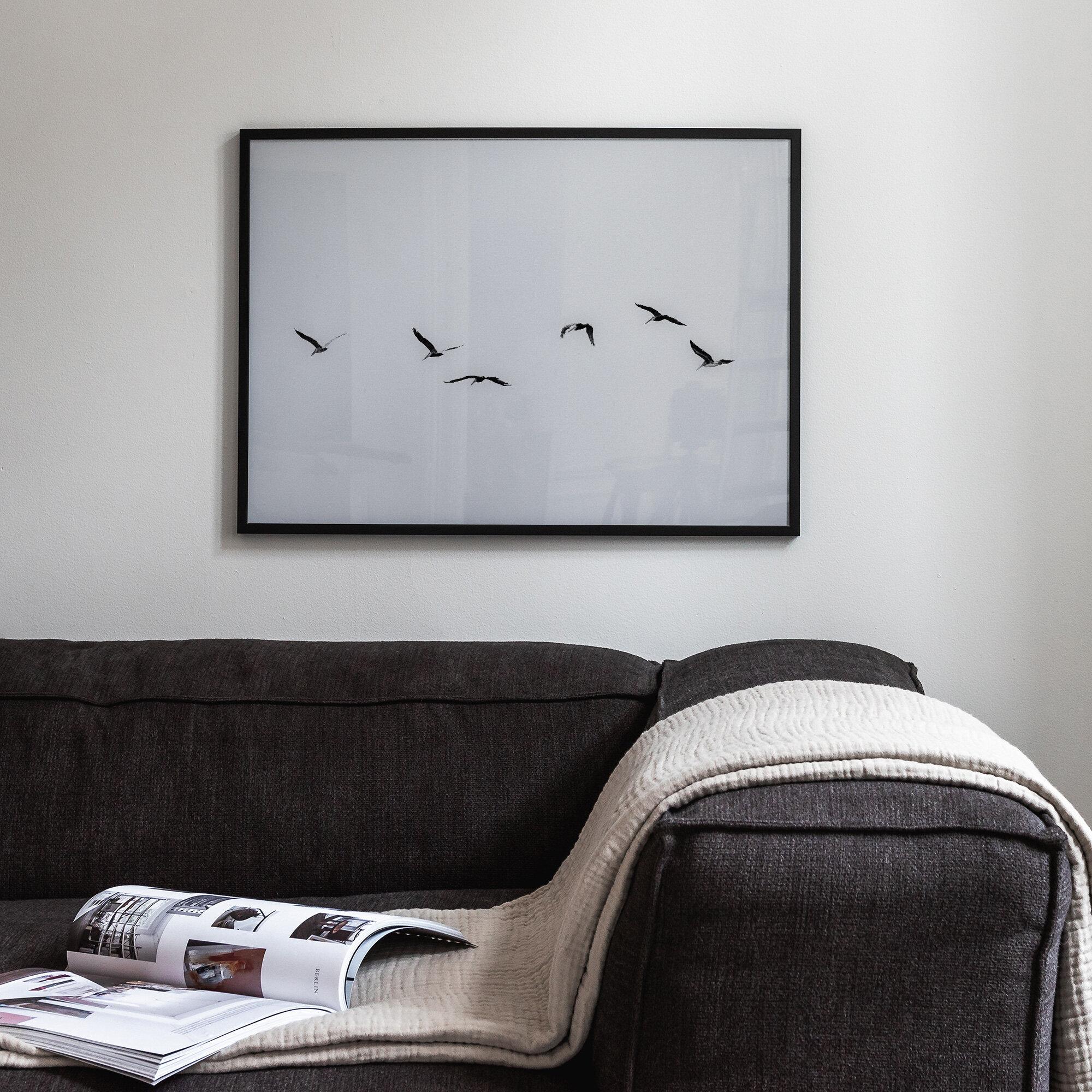 Fåglar i gråskalor poster